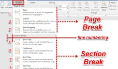 How to Insert Page-Section Break in Microsoft Word 2016
