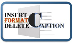How to Add Format Delete Caption in Microsoft Word 2016