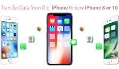 How to Transfer all your Data from Old iPhone to new iPhone 88 Plus or 10