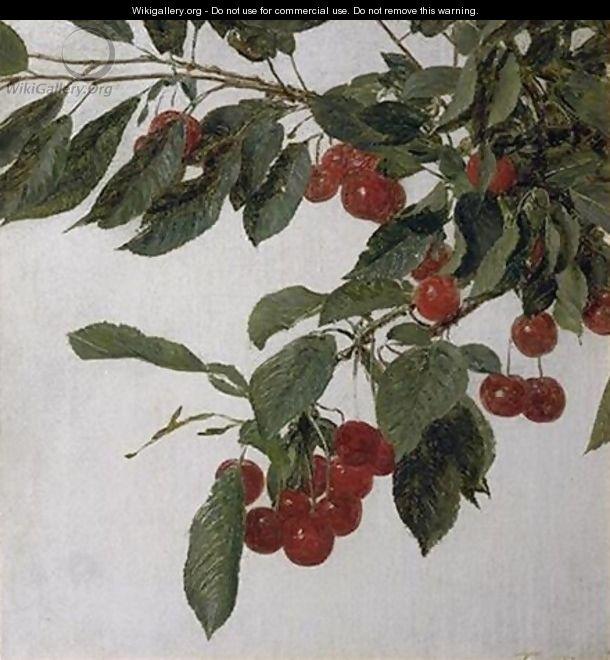 Cherries - Ignace Henri Jean Fantin-Latour