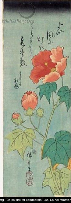 Fuyo. Hibiscus En Fleurs - Utagawa or Ando Hiroshige