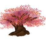 How To Draw A Cherry Blossom 10 Steps With Pictures Wikihow