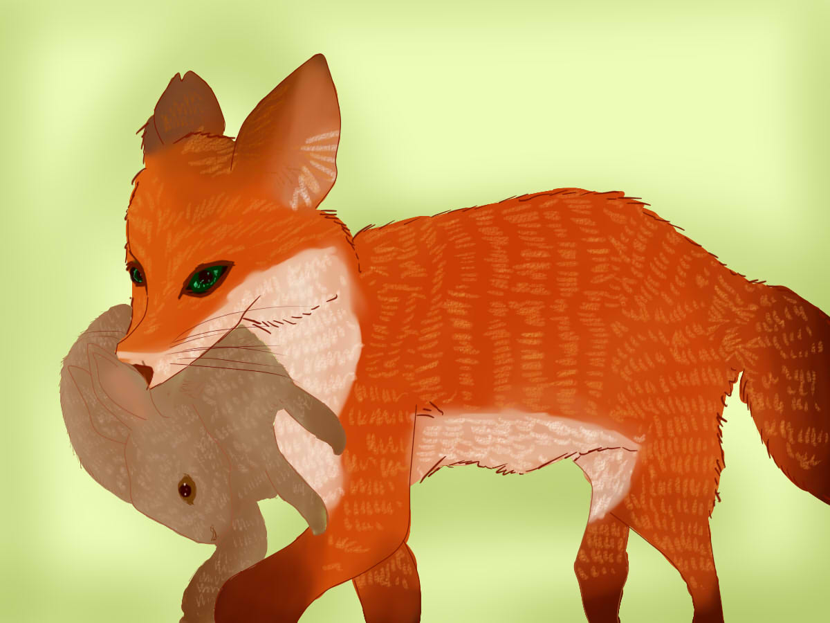 How To Groom A Pet Fox 9 Steps With Pictures WikiHow