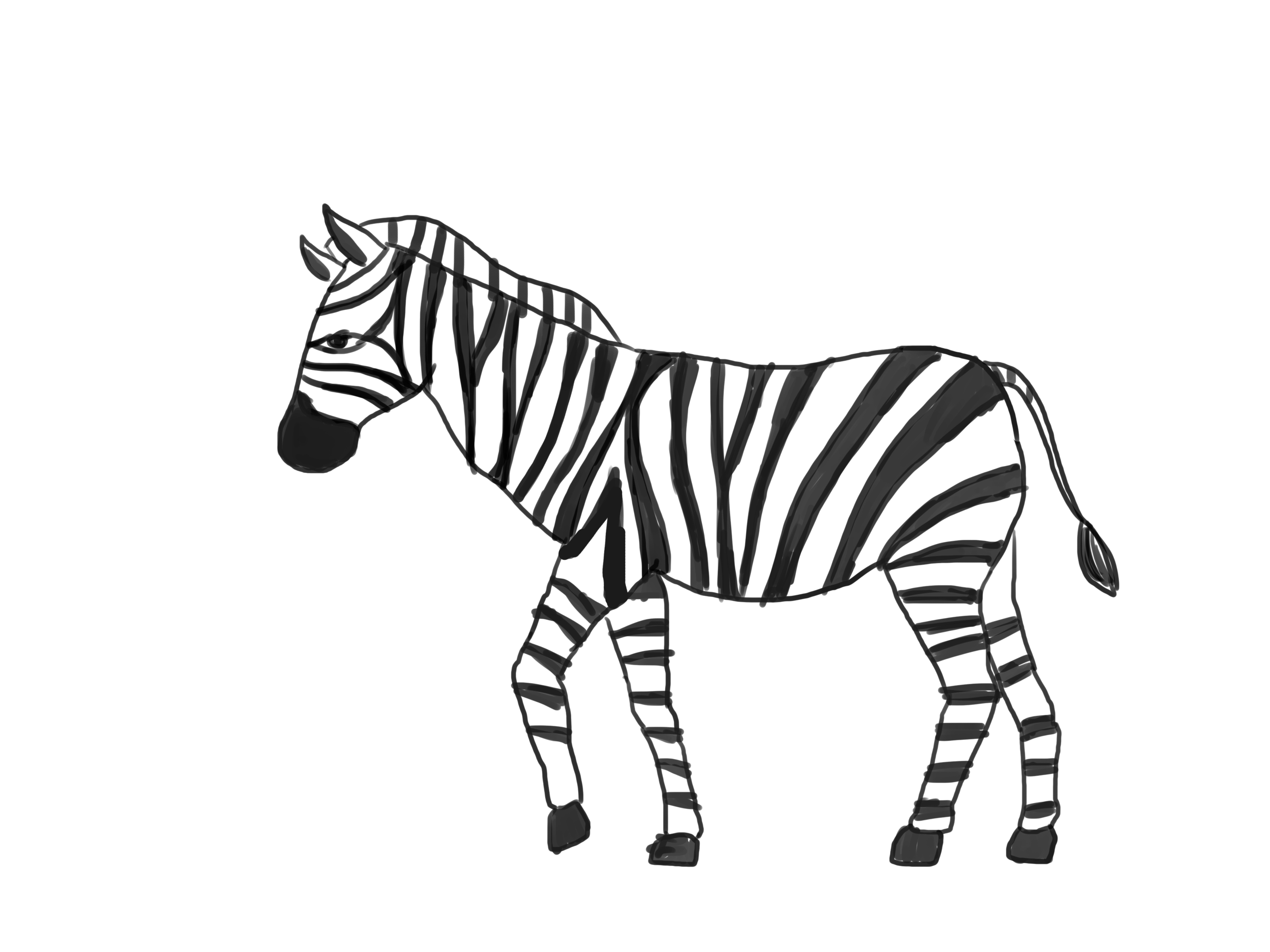 How To Draw A Zebra With Pictures