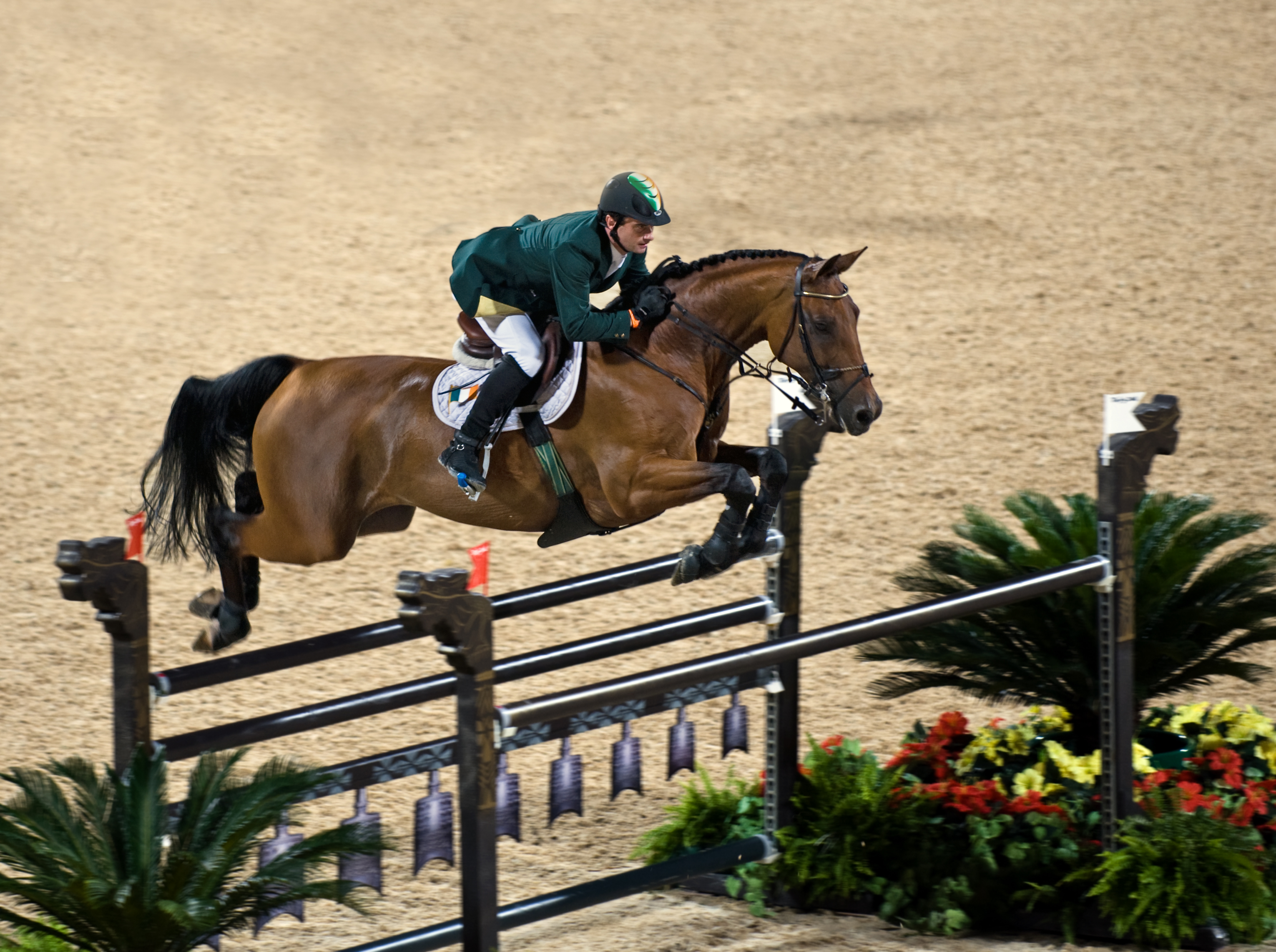 3 Ways To Make Model Horse Jumps Wikihow