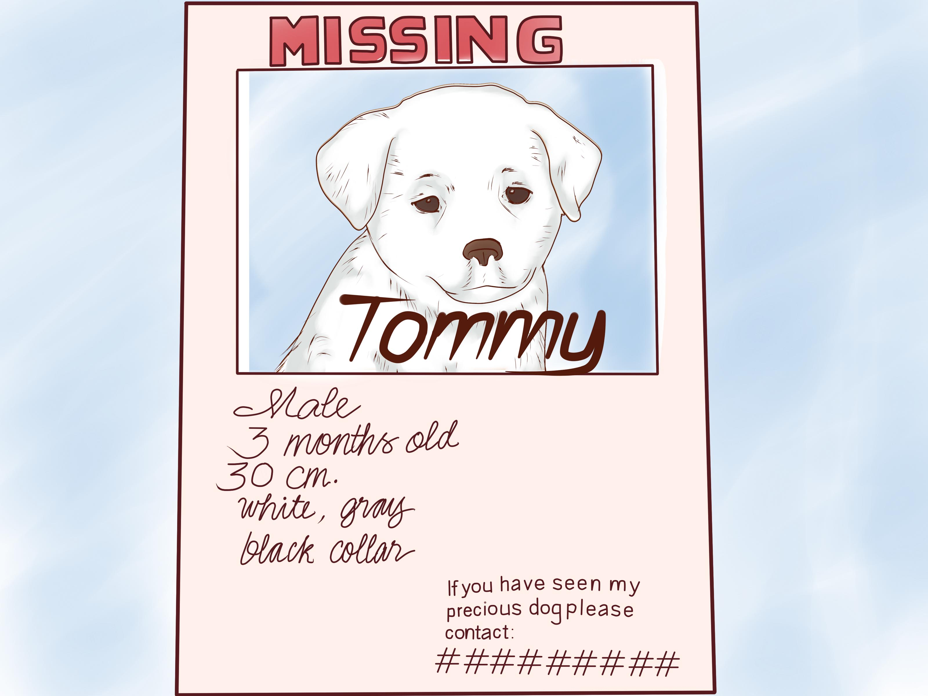 lost dog poster template – Lost Pet Template