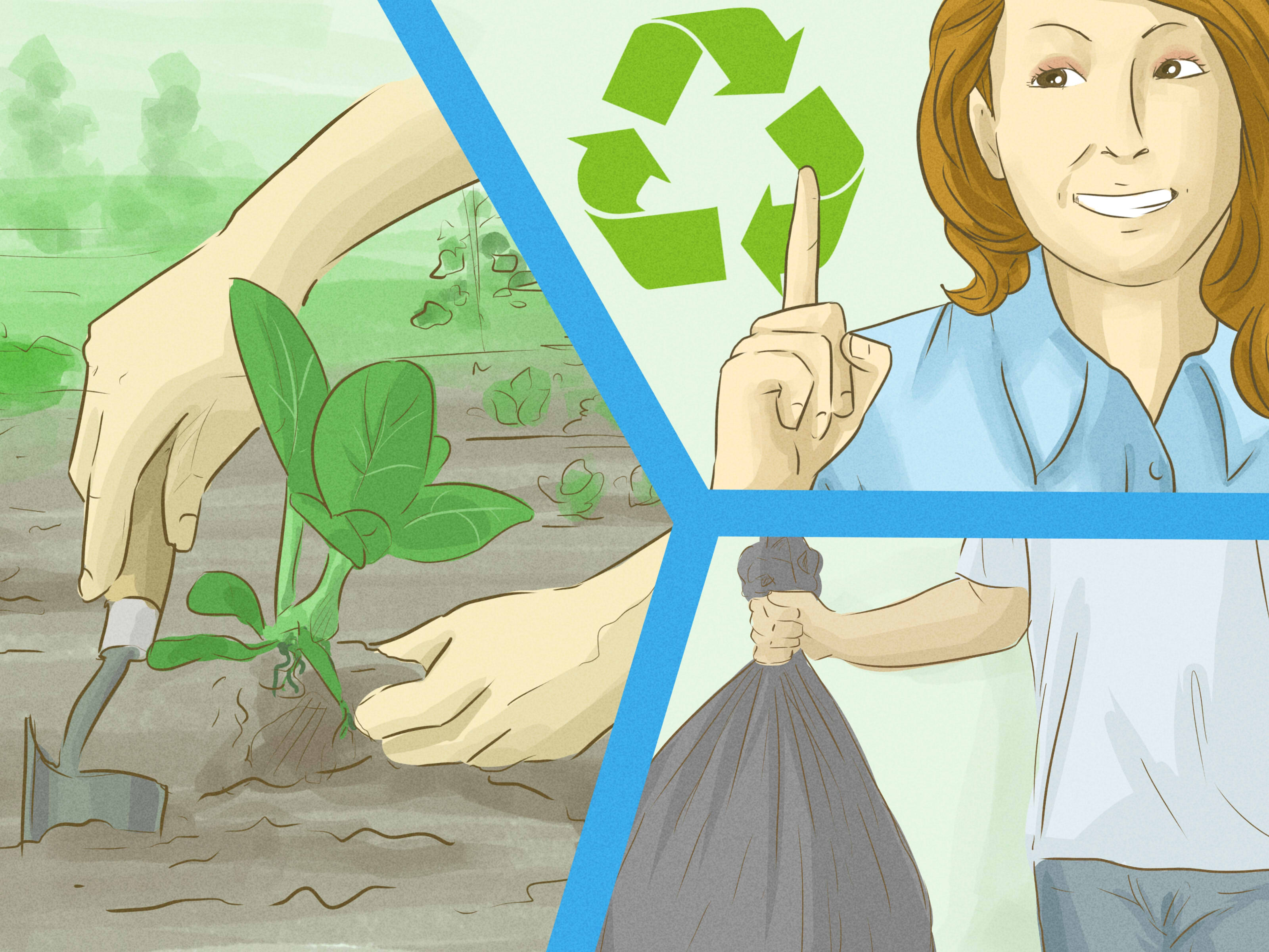 How To Help Save The Environment With Pictures