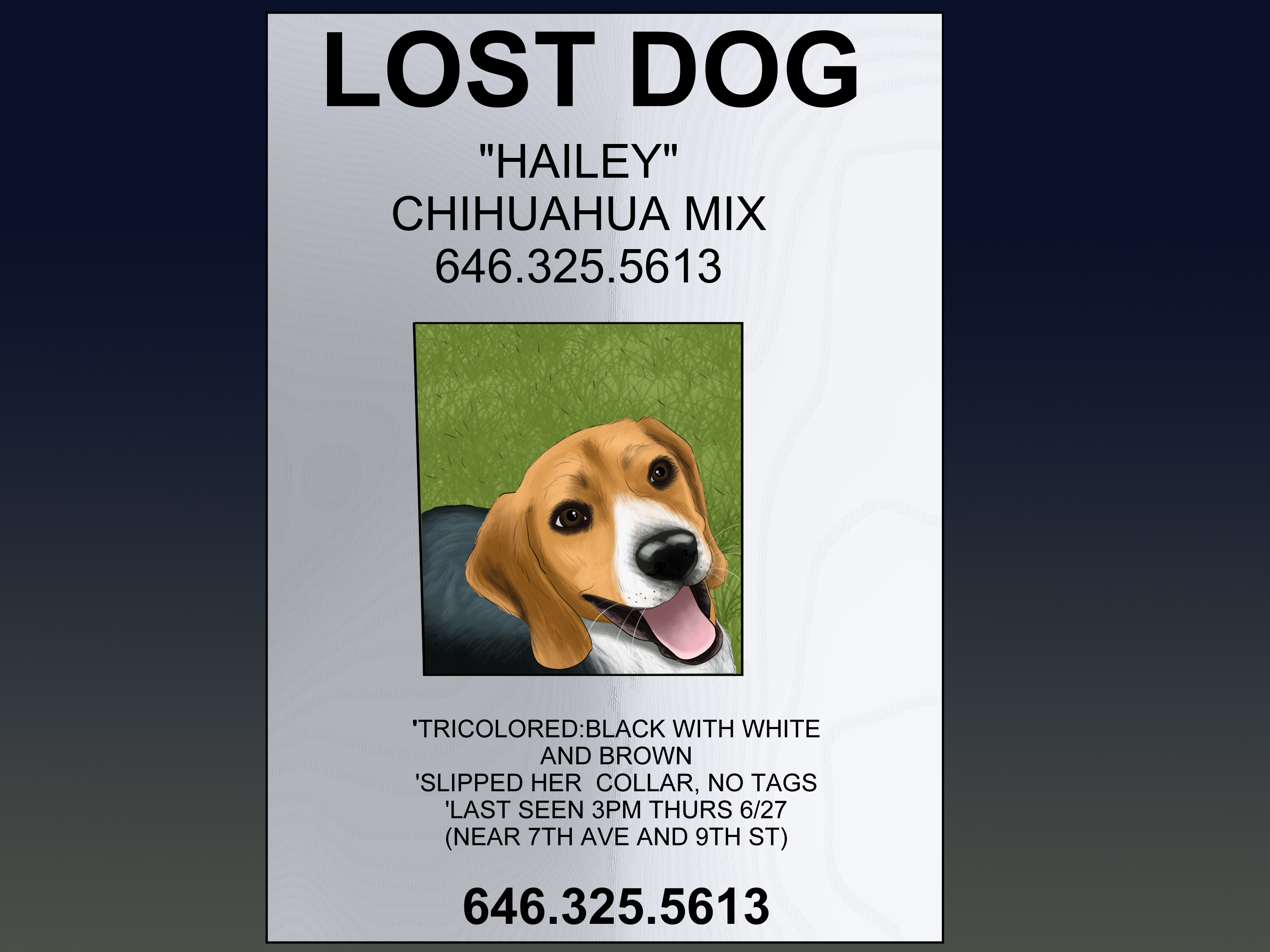an effective missing pet poster