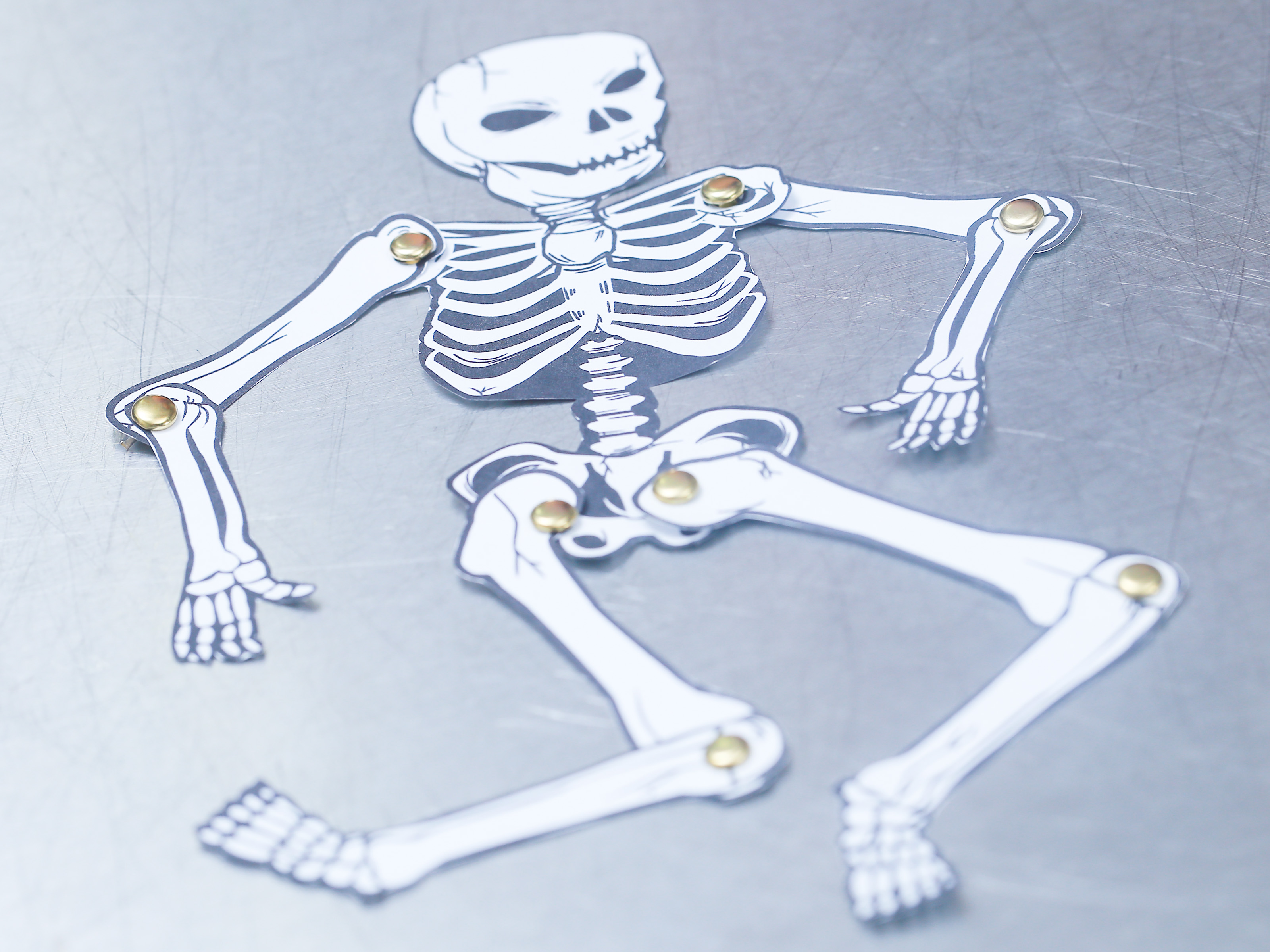 How To Make A Human Skeleton Out Of Paper 12 Steps