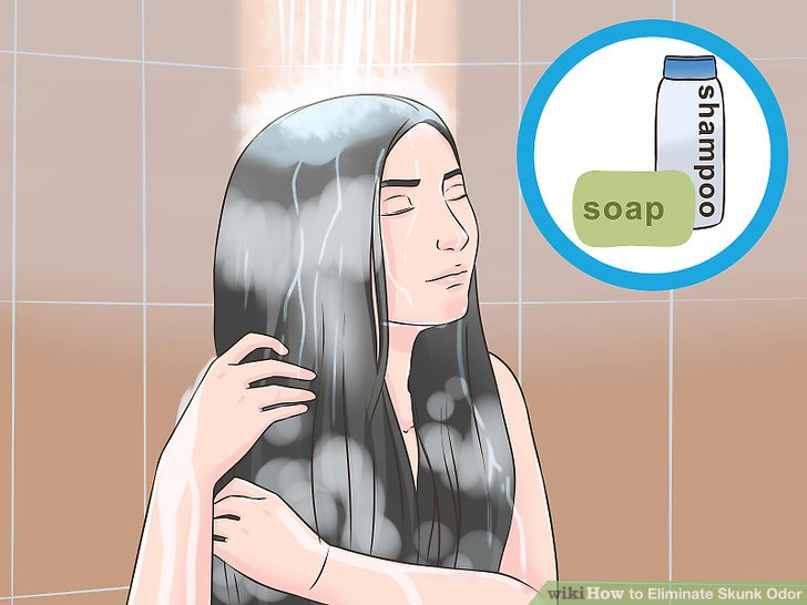 Eliminate Skunk Odor Step 5 Version 2.jpg