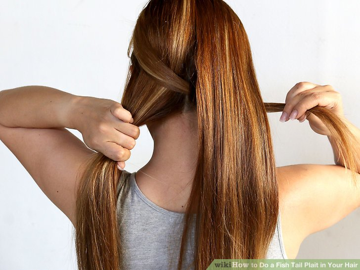 image titled do a fish tail plait in your hair step 3