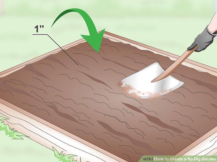 Create a No Dig Garden Step 13.jpg
