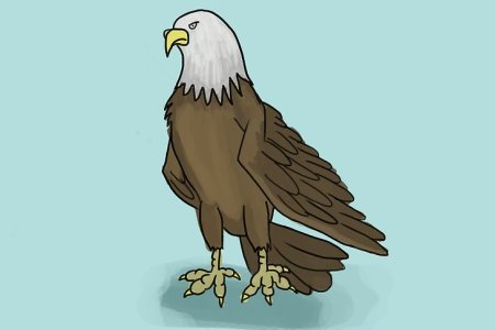 Photos Paintings Of Eagles Drawings Art Gallery Best Eagle Painting Ideas On Pinterest Drawing Head Vectors And PSD Files Free