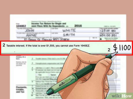 Fill income tax return