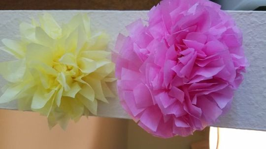 3 Ways to Make Tissue Paper Flowers   wikiHow Uploaded 2 years ago