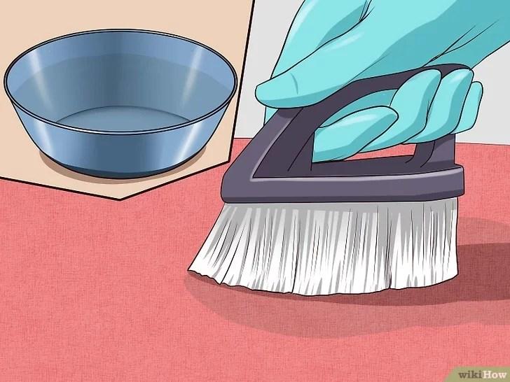 Immagine titolata Remove Cat Urine Smell Step 4