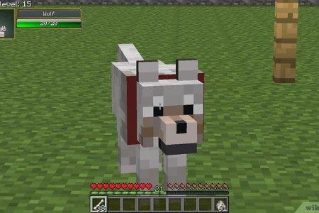 Minecraft Spielen Deutsch Minecraft Spielen Ohne Anmeldung Bild - Minecraft spiele kostenlos ohne anmeldung