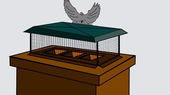 duiven verjagen