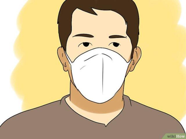 Imagen titulada Survive a Bird Flu Pandemic Step 9