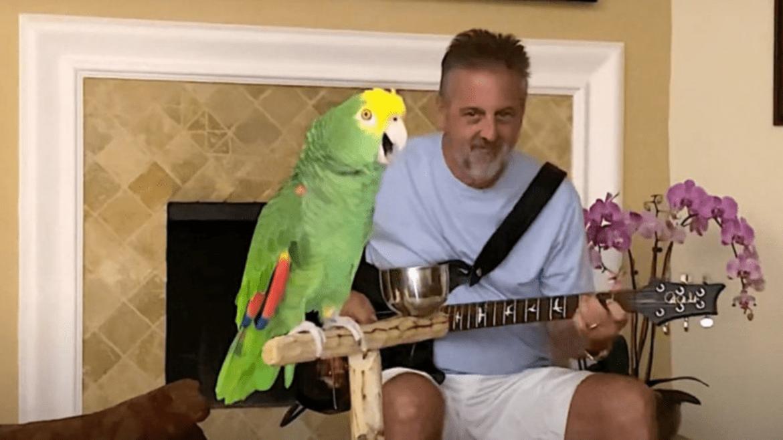 Frank Maglio e o papagaio Tico