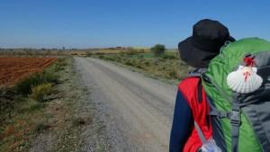 camino de santiago hombre