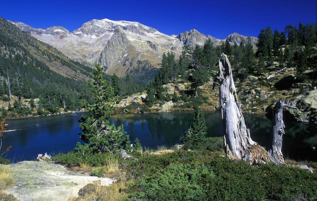 De Pyreneeën Nader Bekeken