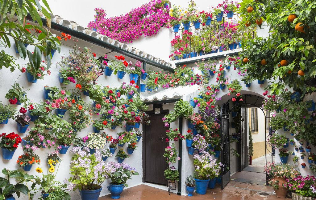 Maand Mei, Elke Zondag Patio's Bezoeken In De Stad Córdoba