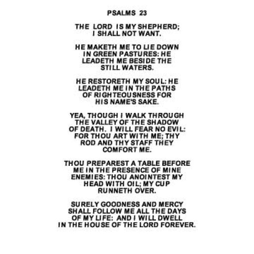 Image result for psalm 23