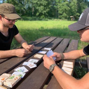 Review: Wilderniskaarten eetbare planten en paddenstoelen