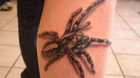 tattoo_arm_tarantel