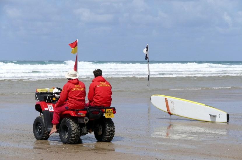 Lifeguards   Wild Survivor