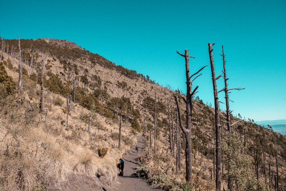 Wanderweg auf dem Vulkan Acatenango in Guatemala