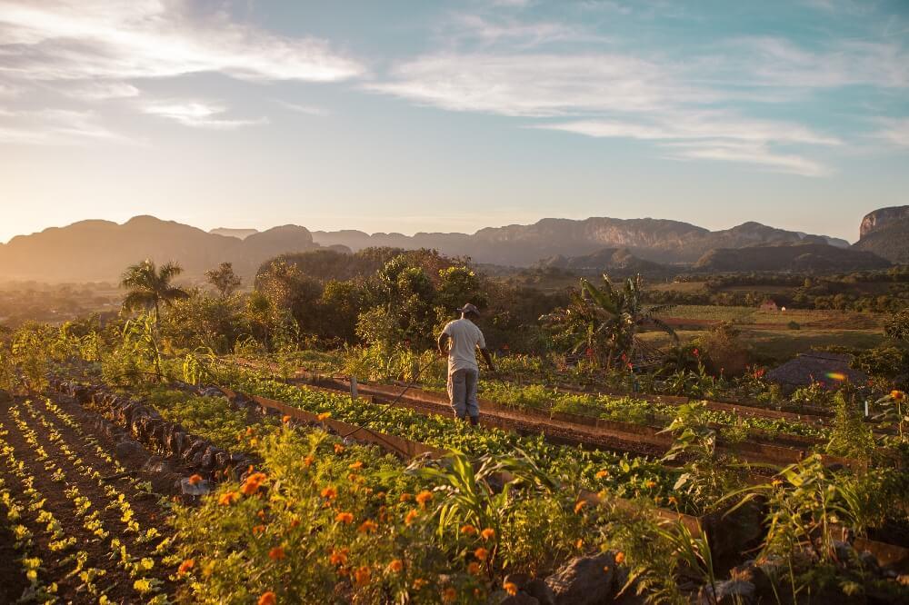 Reiseroute 3 Wochen Vinales Farm