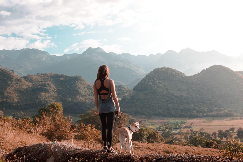 Einreise mit Hund nach Mexiko Titelbild