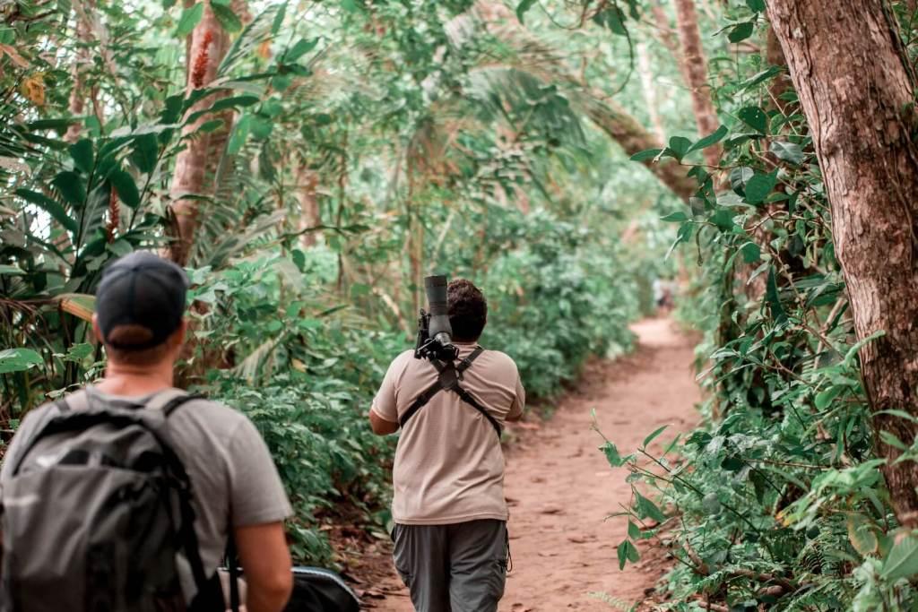 Nationalpark Cahuita Karibikküste von Costa Rica
