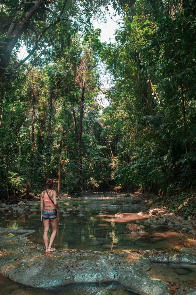 Rio Dulce in Guatemala Dschungel