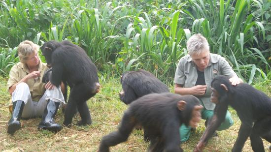 BLACK ANIMALS TRADE FACTS HOW TO GET ANIMALS ONLINE