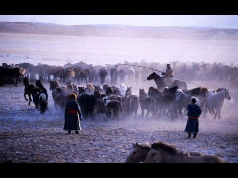 live with nomads mongolia