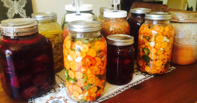 Ferment collection