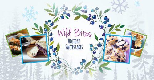wb-holiday-fb-post