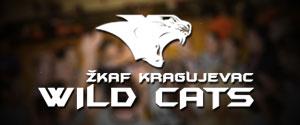 Wild Cats Banner