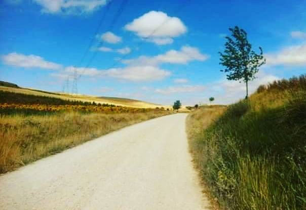 Why You Should Walk The Camino De Santiago.