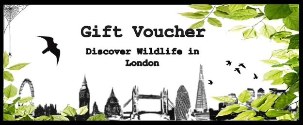 Gift Voucher wildlife walk London
