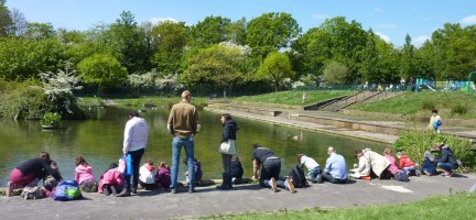 Community Pond Dipping