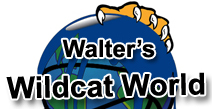 Walter's Wildcat World