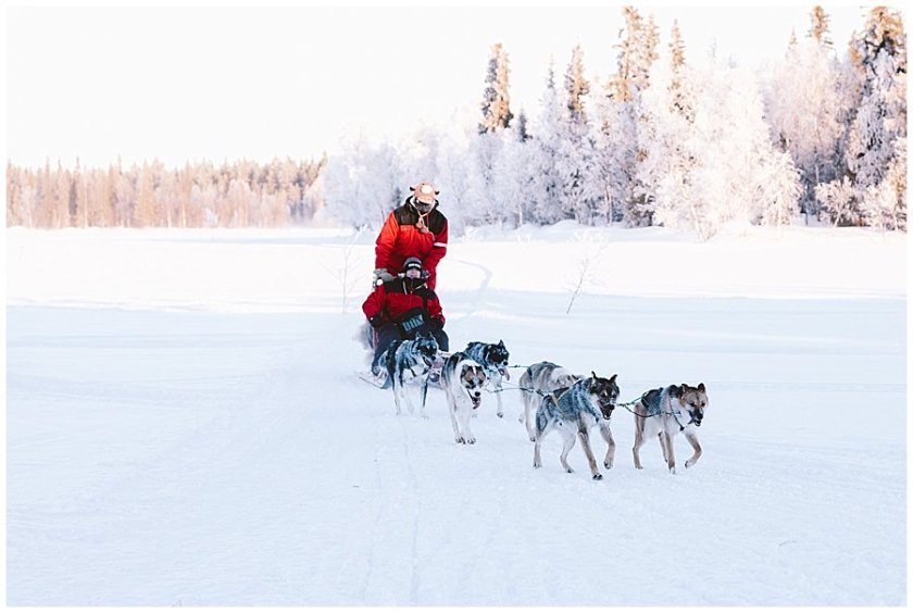 Wingrens Husky Safari Lapland the second sleigh arrives back at base by Wild Connections Photography