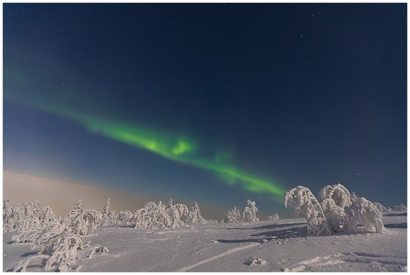 Northern Lights shine across the sky in Levi Finland by Wild Connections Photography