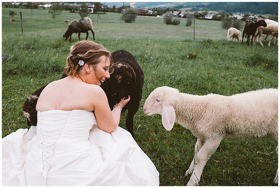 St Johann in Tirol Elopement Nikki finds a field of sheep and asks the farmer if she can meet them by Wild Connections Photography
