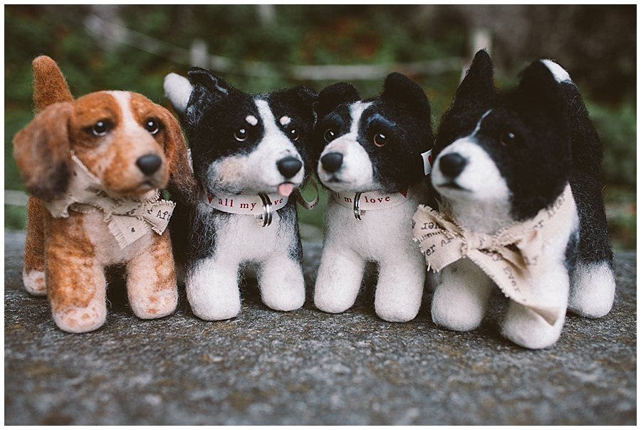 St Johann in Tirol Elopement the four shelter pups dogs by Wild Connections Photography