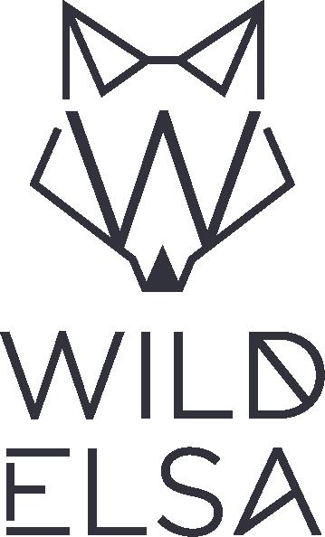 Risultati immagini per wildelsa logo